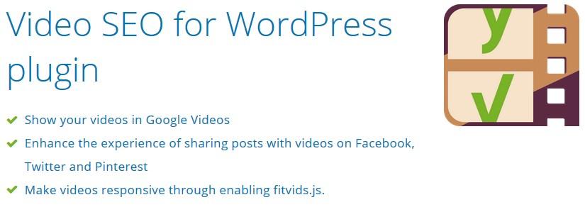 wordpress vidoe plugin