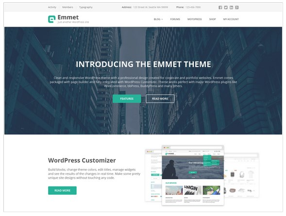 emmet business theme