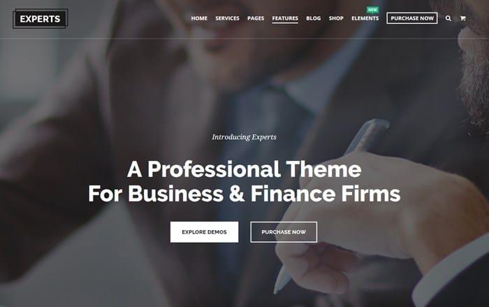 wordpress financial expert