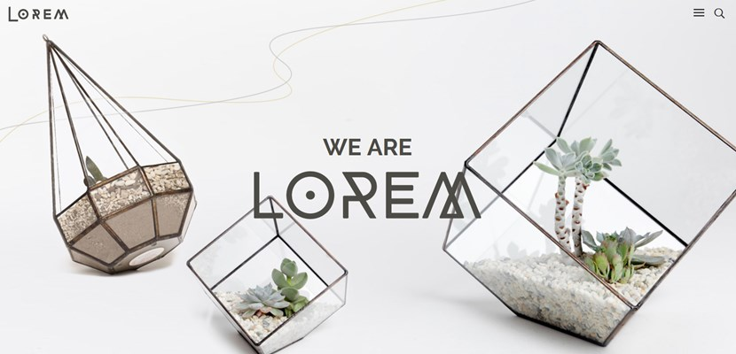 creative wordpress theme lorem