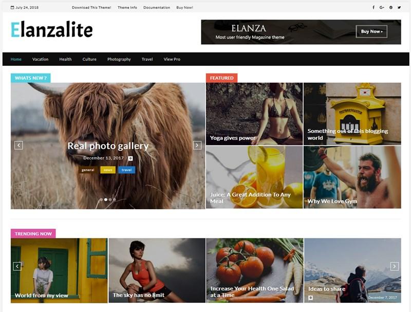 ElanzaLite wp magazine theme