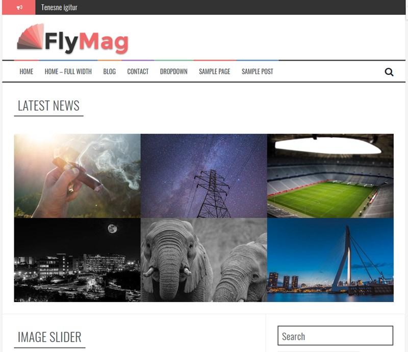 FlyMag wp theme