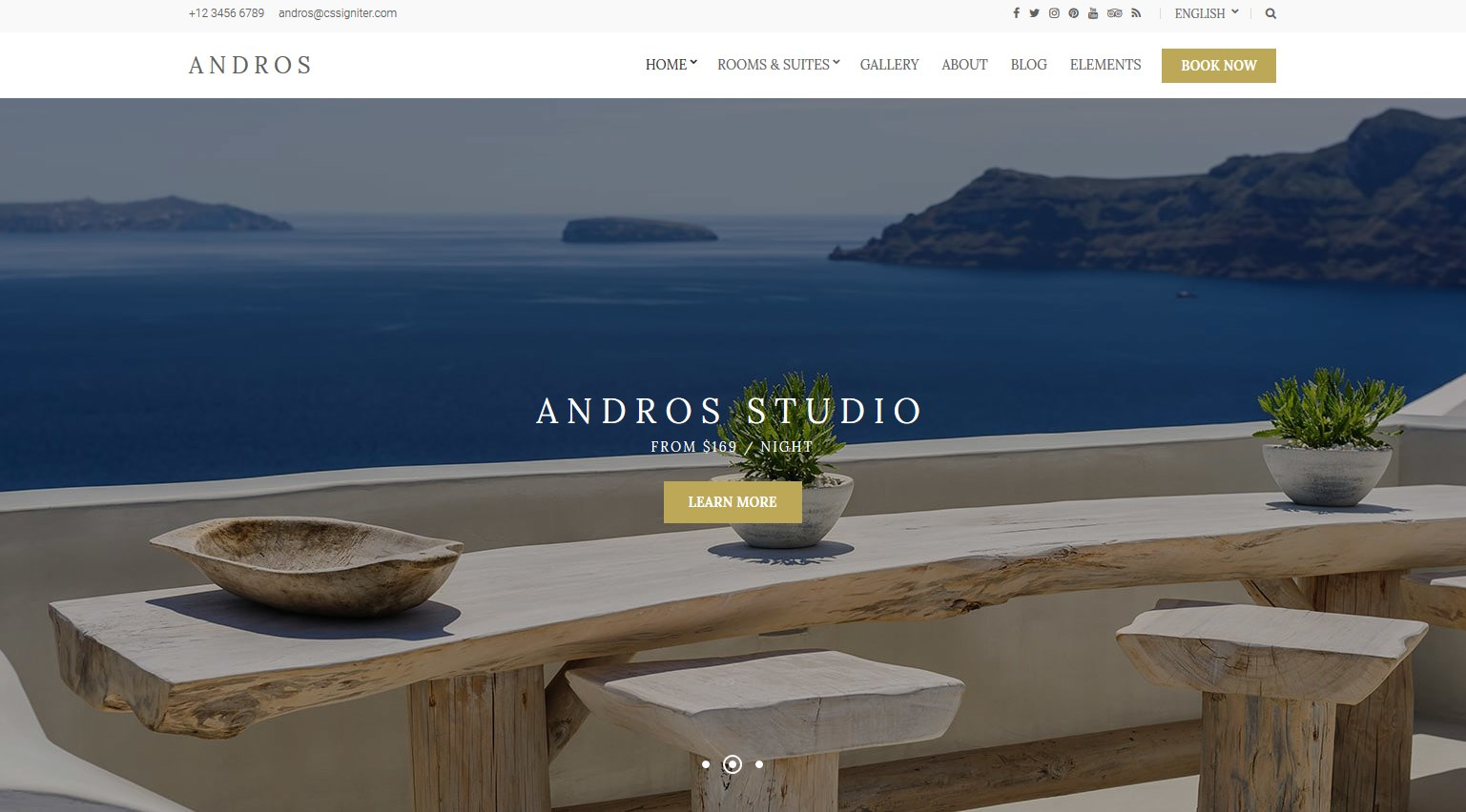 Andros theme wordpress real estate