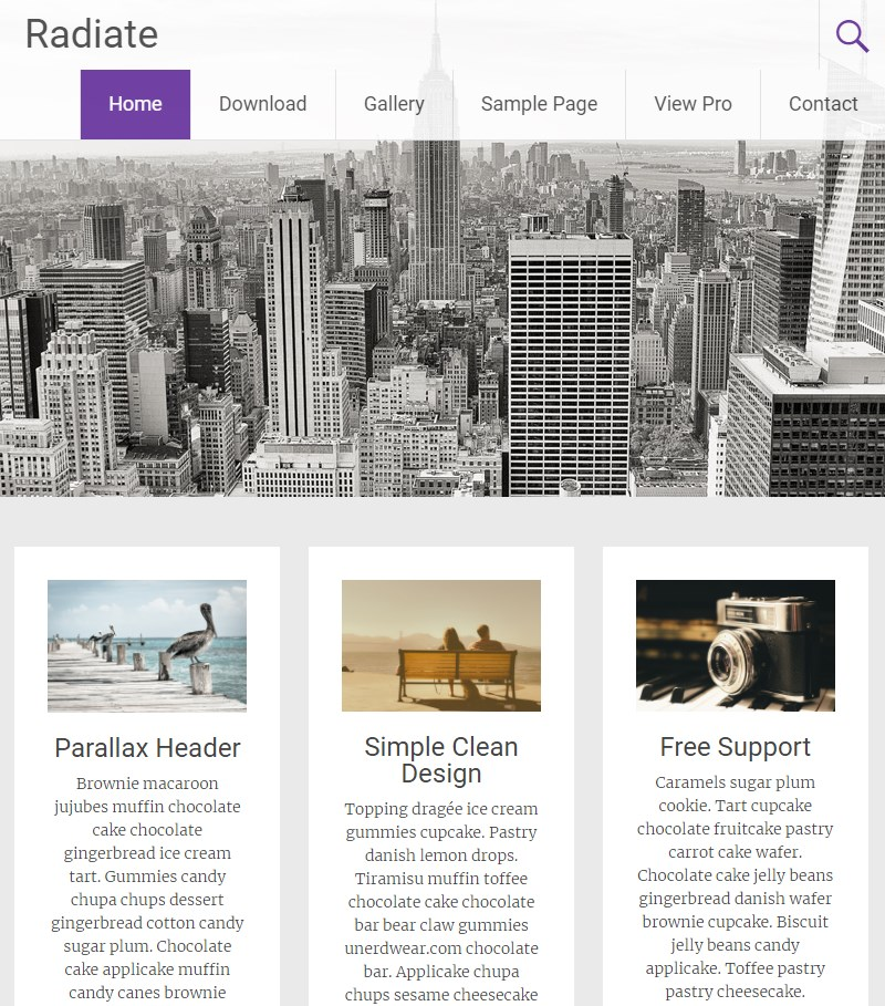 Radiate_WordPress_theme