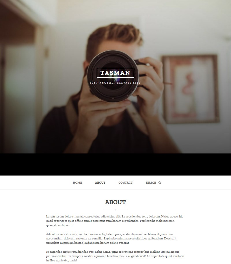 Tasman_WordPress_theme