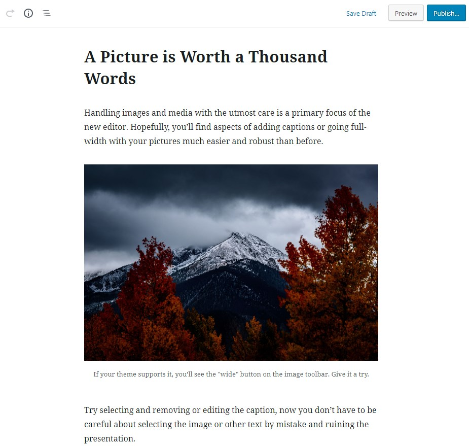 how-to-use-Gutenberg-WordPress