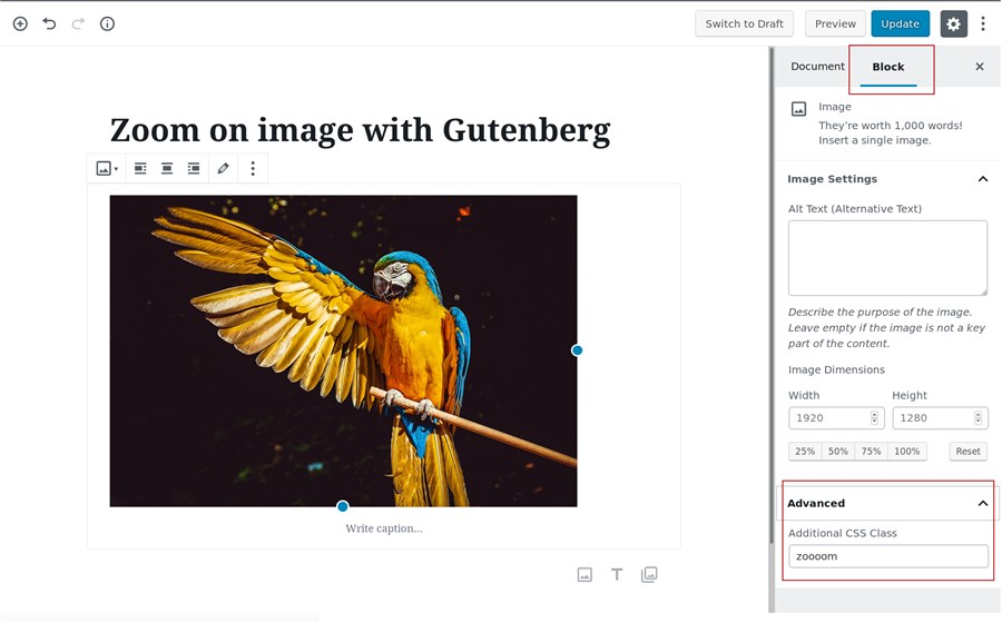 wp image zoom for gutenberg builder