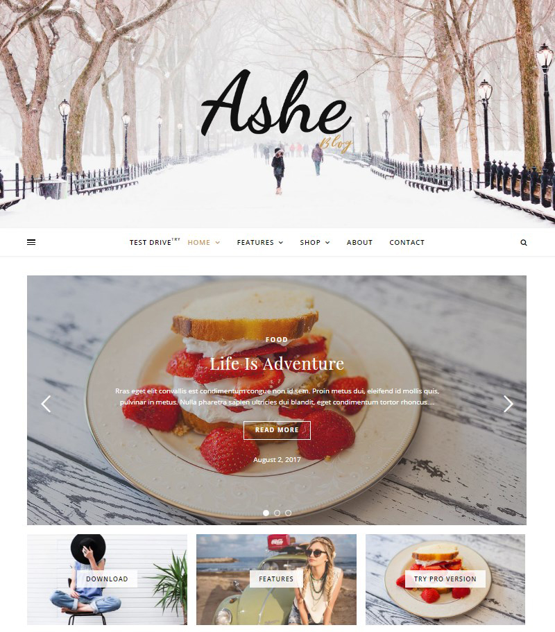 Ashe-free-WordPress-blog-themes