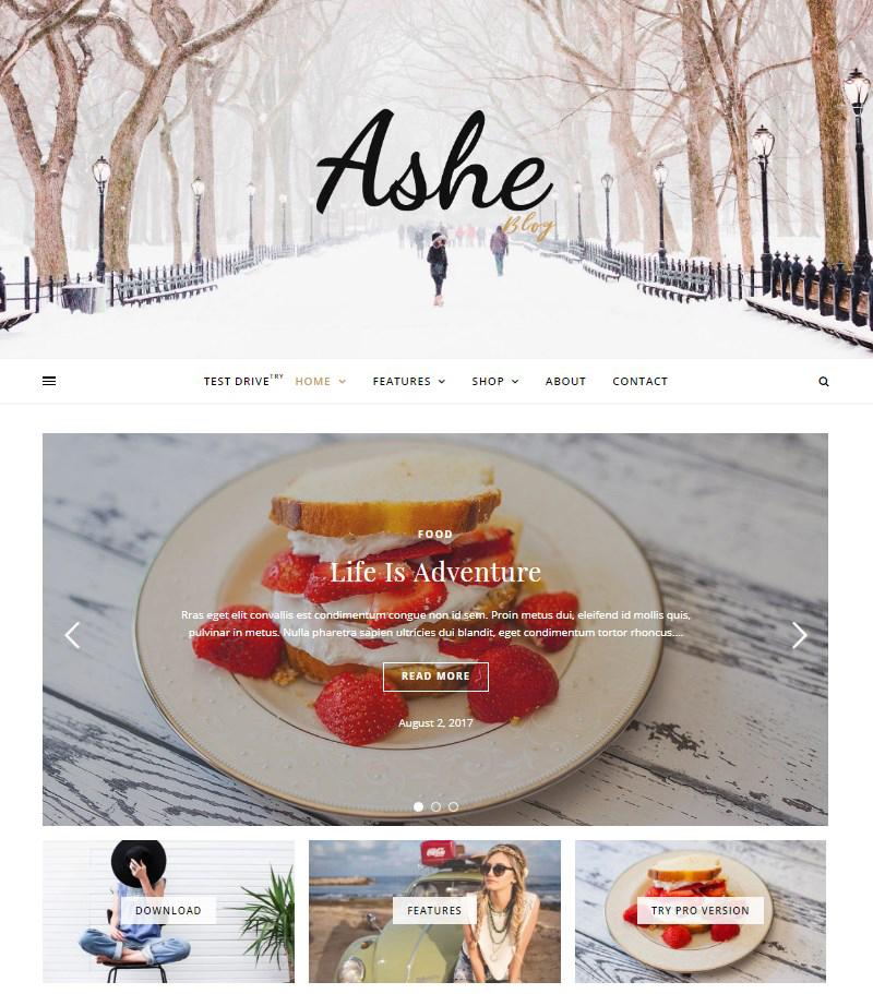 Ashe-free-WordPress-blog-themes