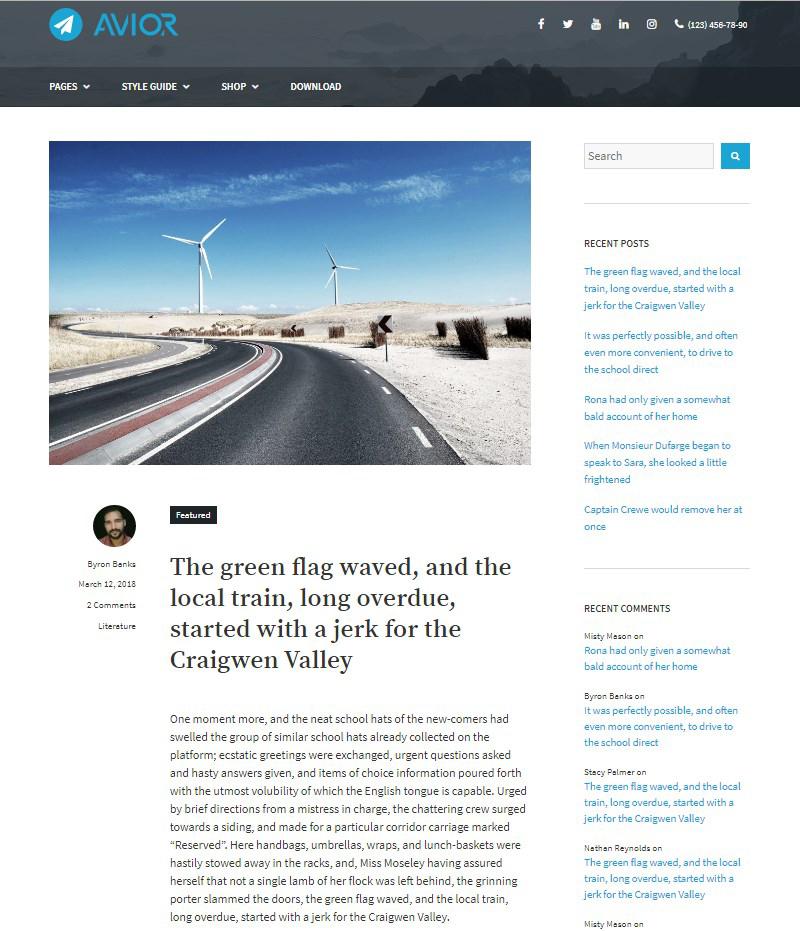 WordPress-blogging-theme-Avior-MotoPress