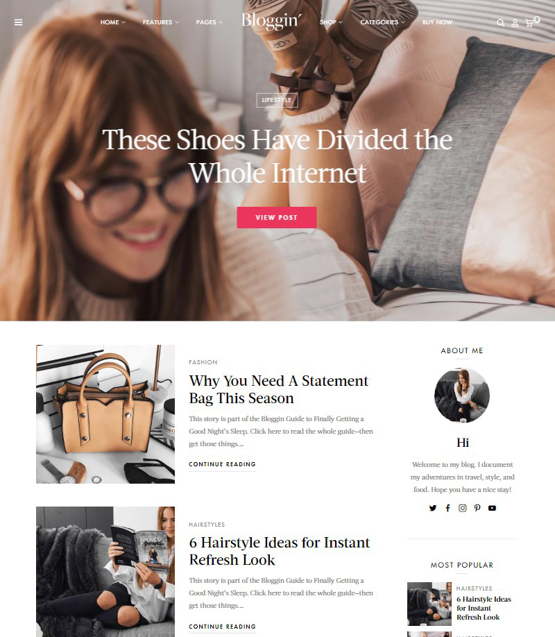 Blgn-personal-blog-theme-WordPress