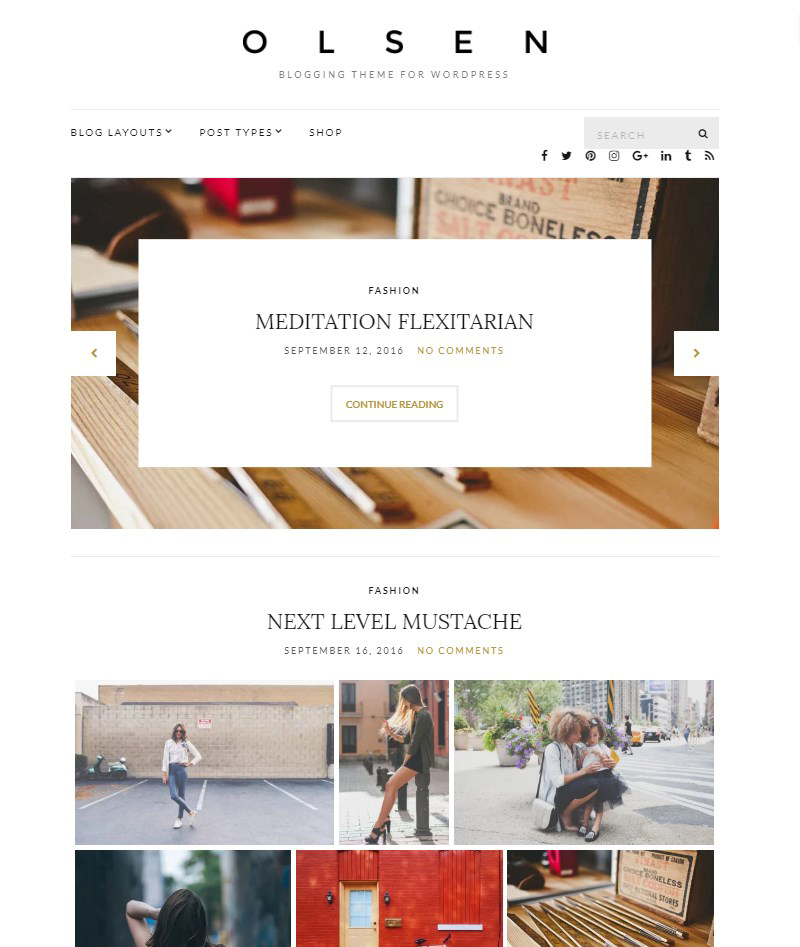 Olsen-Lite-blog-template-WordPress