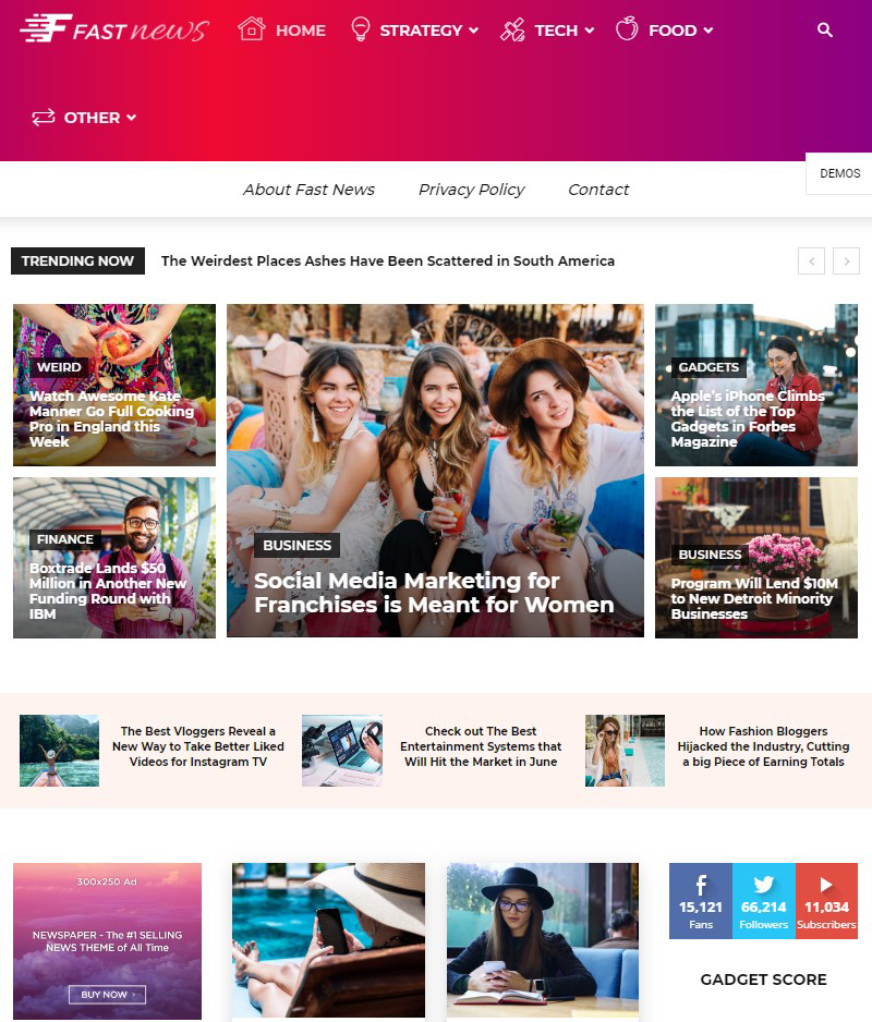 Newspaper news website template WordPress