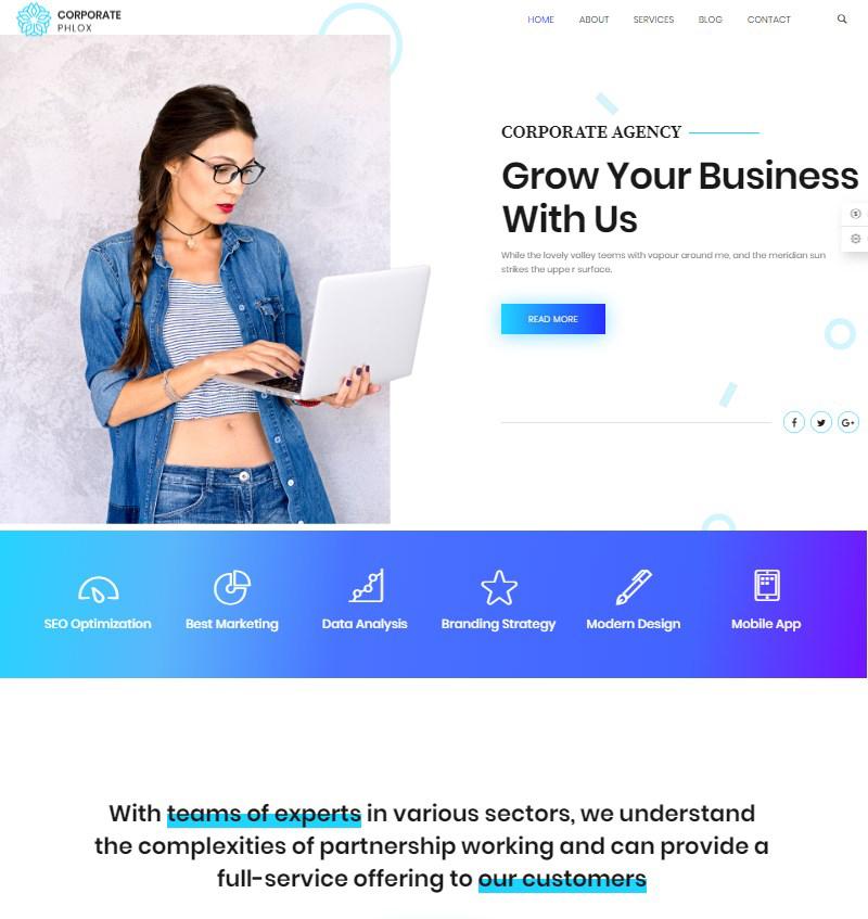 Phlox Pro flexible WordPress theme