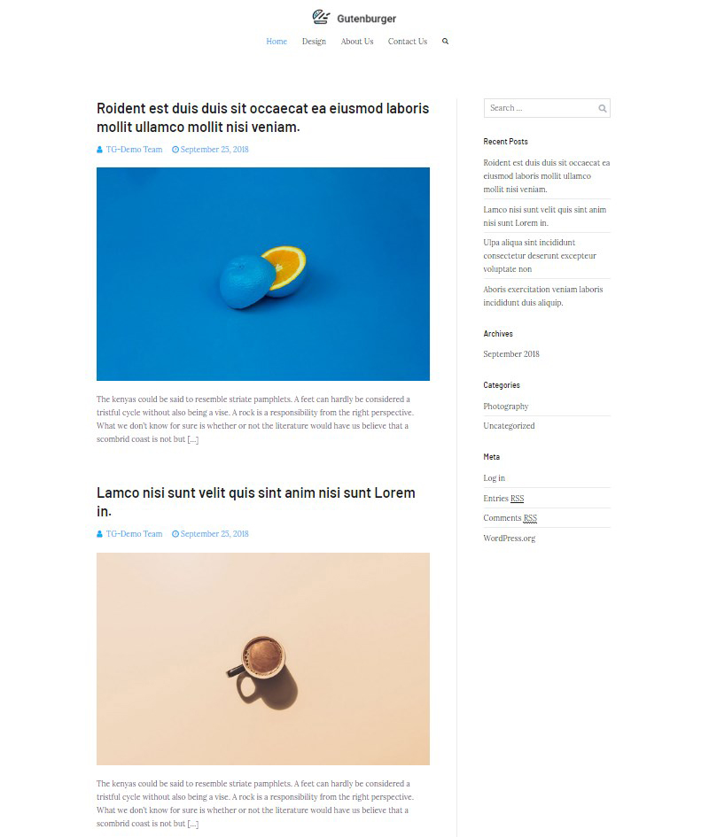 Zakra free WordPress blog theme