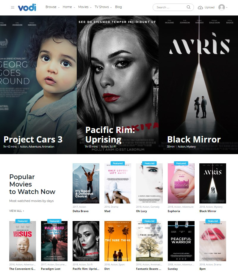 Vodi WordPress video theme