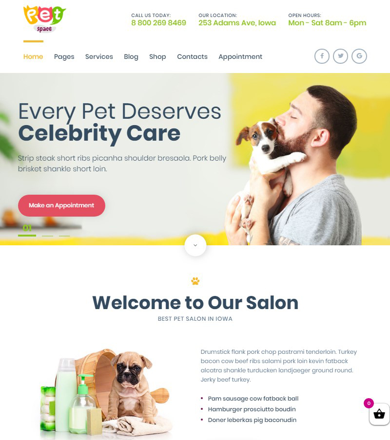 PetSpace pet grooming WordPress theme