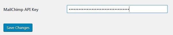 mailchimp-wordpress-api-key
