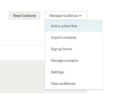 manage-audience-mailchimpmanage-audience-mailchimp