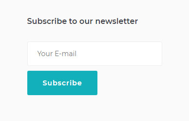newsletter-subscription-form