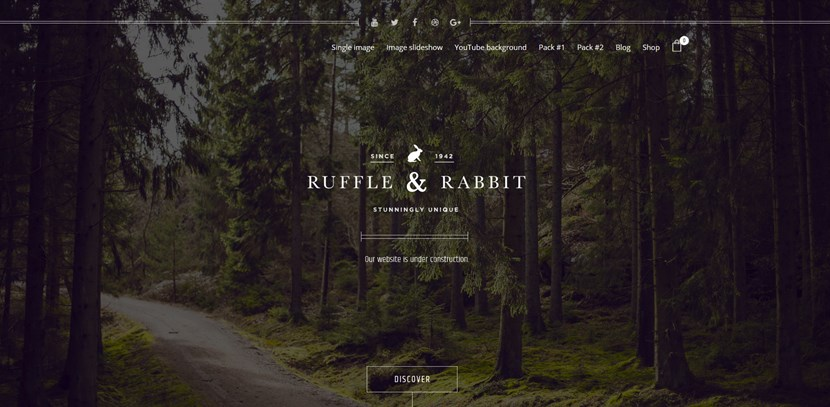 rabbit wordpress coming soon page