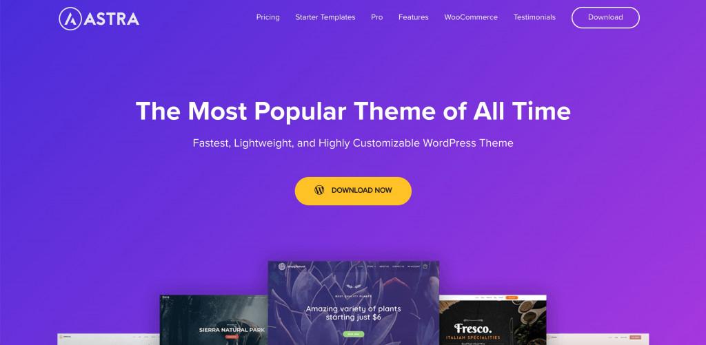 Astra WordPress Elementor theme
