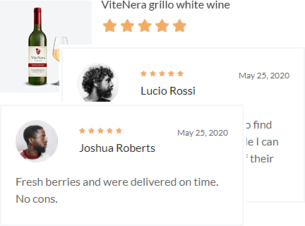 Allow Shoppers to Leave Reviews