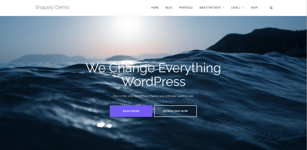 Shapely free WordPresss theme
