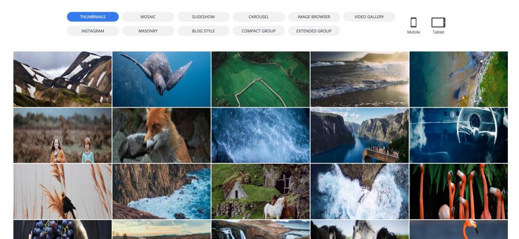 10Web WordPress gallery plugin