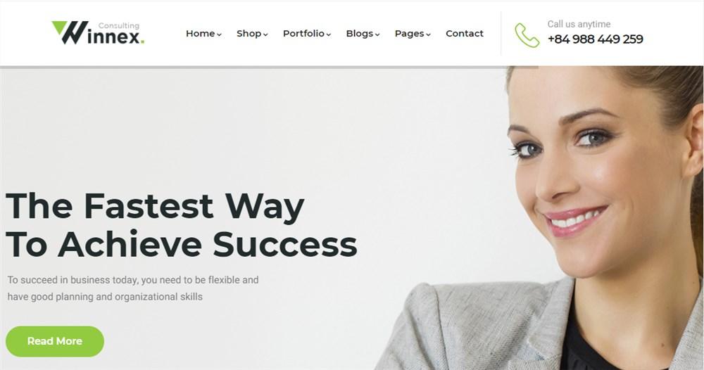 Lawyers WordPress Theme Winnex